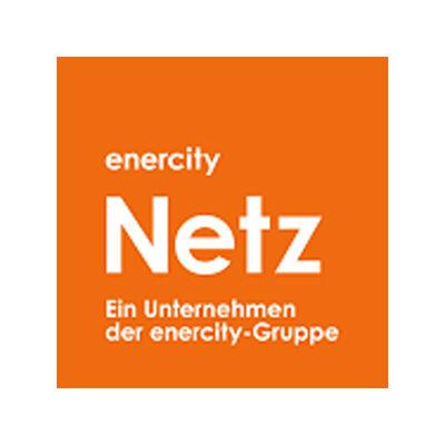 Logo zuschnitt NETZ